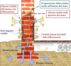 risalita-spess-muro